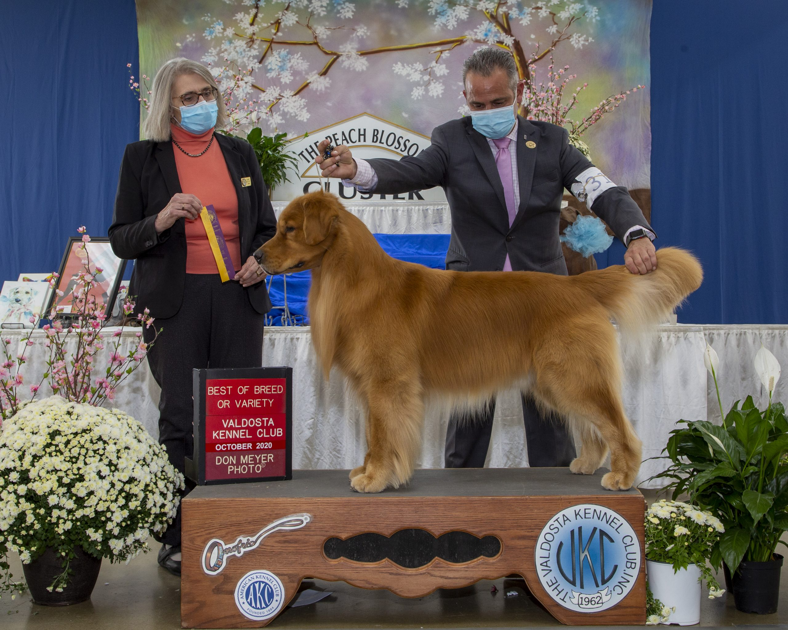 Best of Breed Atlanta 2020