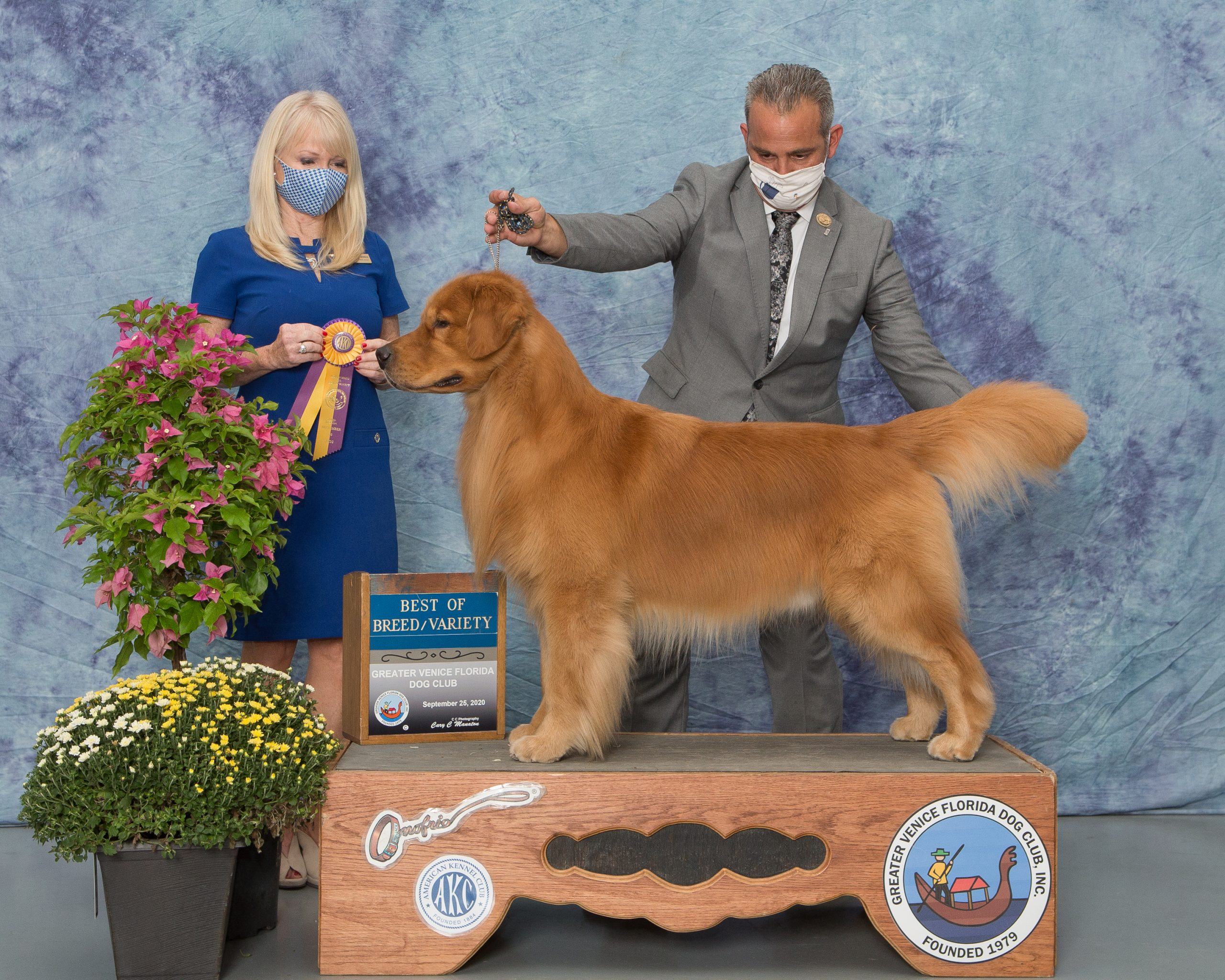 Best of Breed Tampa 2020